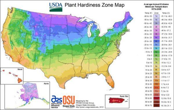 plant hardiness zone